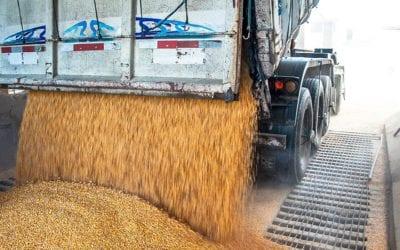 Conheça os principais cuidados no transporte de grãos